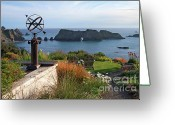 Weathervane Greeting Cards - Northern California Coast View Greeting Card by Charlene Mitchell