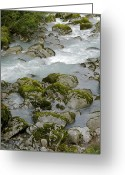 Glacier Greeting Cards - Norway, Stream Of Water At Jostedal Greeting Card by Keenpress