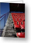 Shea Stadium Photo Greeting Cards - Nosebleeds Greeting Card by Frank Romeo