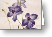Purple Garden Greeting Cards - Nostalgia Greeting Card by Kristin Kreet