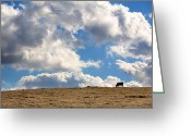 Ranch Greeting Cards - Not a Cow in the Sky Greeting Card by Peter Tellone