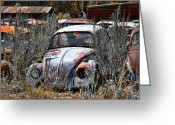 Beetles Greeting Cards - Not Herbie the Love Bug Greeting Card by Douglas Barnard