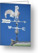 Weathervane Greeting Cards - Not in Vane Greeting Card by Christine  Fifer