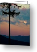 Moonrise Greeting Cards - Not Quite Clearcut Greeting Card by Albert Seger
