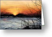 Barbara Painting Greeting Cards - November Sunset Greeting Card by Barbara Jewell