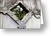 Peeping Greeting Cards - Now You Know Greeting Card by Dean Harte