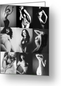 Nudes Greeting Cards - Nude BW Collage  Greeting Card by Falko Follert