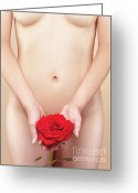 Thin Greeting Cards - Nude Woman with a Red Rose Greeting Card by Oleksiy Maksymenko