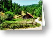 Frank Feliciano Greeting Cards - NW California Country Road Greeting Card by Frank Feliciano