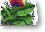 Retro-montage Greeting Cards - Nymphaea Greeting Card by Eric Edelman