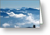 Misty Prints Prints Greeting Cards - O M G Greeting Card by Louie Rochon