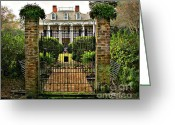 Live Art Greeting Cards - Oak Alley Gate Greeting Card by Perry Webster