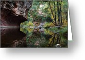 Desert Southwest Greeting Cards - Oak Creek Canyon Reflections Greeting Card by Dave Dilli