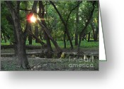 Janeen Wassink Searles Greeting Cards - Oak Grove State Park Greeting Card by Janeen Wassink Searles