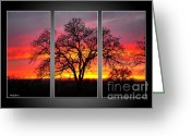 Reception Photo Greeting Cards - Oak Silhouette Tryptych 1 Greeting Card by Cheryl Young