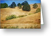 Oregon Wildlife Digital Art Greeting Cards - Oaks on Grassy Hill Greeting Card by Bonnie Bruno