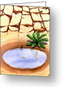 Puddle Greeting Cards - Oasis Greeting Card by Catherine G McElroy
