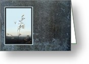 Wild Grass Greeting Cards - Oat Grass 2 Greeting Card by Ellen Henneke