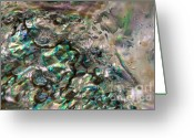 Abalone Seashell Greeting Cards - Oceanic Eruption Greeting Card by Joy Gerow