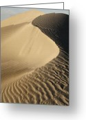 Oceano Greeting Cards - Oceano Dunes II Greeting Card by Sharon Foster