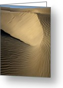 Oceano Greeting Cards - Oceano Dunes III Greeting Card by Sharon Foster