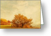 Autumn Colors Greeting Cards - October Greeting Card by Iris Lehnhardt