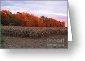 Cornfield Greeting Cards - October Sunset on the Autumn Woods Greeting Card by J McCombie