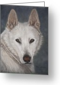 Wolves Pastel Greeting Cards - Ogin Greeting Card by Teresa LeClerc