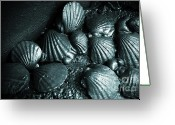 Shellfish Greeting Cards - Oil Spill Greeting Card by Carlos Caetano