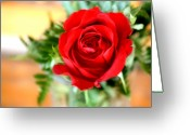 Colorful Photography Greeting Cards - Oklahoma Rose Greeting Card by Karen M Scovill