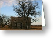 Graze Photo Greeting Cards - Oklahoma Shack Greeting Card by Ellen Henneke