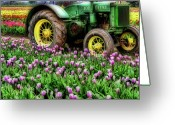 John Deere Greeting Cards - Old and New Greeting Card by Bonnie Bruno