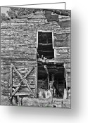 Old Photo Greeting Cards - Old Barn Door in Black and White Greeting Card by Debra and Dave Vanderlaan