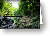 Reflection Pyrography Greeting Cards - Old Bridge  In The Mountain Greeting Card by Radoslav Nedelchev