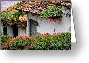 Mexican Flowers Greeting Cards - Old buildings in Puerto Vallarta Mexico Greeting Card by Elena Elisseeva
