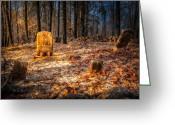 Churchyard Greeting Cards - Old Cemertery Greeting Card by Bob Orsillo