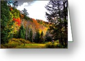 Fall Colors Greeting Cards - Old Country Road in Autumn Greeting Card by David Patterson