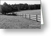 Hill Photographs Greeting Cards - Old Fence And Landscape At Point Reyes California . 7D9812 . Black and White Greeting Card by Wingsdomain Art and Photography