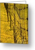 Oblique Greeting Cards - Old Fence Greeting Card by Sophie Vigneault