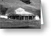 Old Farms Greeting Cards - Old Foothill Farms in Small Town of Sunol California . 7D10796 . bw Greeting Card by Wingsdomain Art and Photography