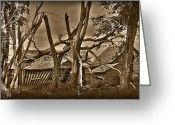 Old Abandoned House Greeting Cards - Old Homestead Greeting Card by Shane Bechler