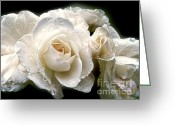 Dew Drops Greeting Cards - Old Lace Rose Bouquet Greeting Card by Jennie Marie Schell