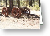 Antique Wagon Greeting Cards - Old Logging Wagon Greeting Card by Carol Groenen