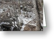 Snow On Field Greeting Cards - Old Man Winters Touch Greeting Card by Lydia Warner Miller