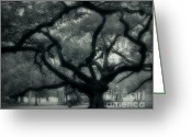 Live Oak Trees Greeting Cards - Old Oak Greeting Card by Perry Webster