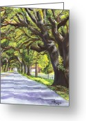 Acrylic Print Greeting Cards - Old Oak Tree Greeting Card by Elaine Hodges