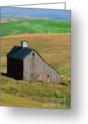 Farm Fields Greeting Cards - Old Palouse Barn Greeting Card by Sandra Bronstein