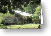 Banana Tree Greeting Cards - Old Plantation House Greeting Card by Mary Deal