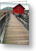 Red Building Greeting Cards - Old Red Shack At The End of The Walkway Greeting Card by Wingsdomain Art and Photography
