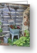Wash Board Greeting Cards - Old Rural Garden Scene Greeting Card by Linda Phelps